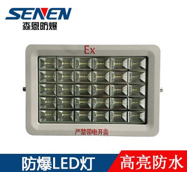 免驱高效节能LED防爆泛光灯
