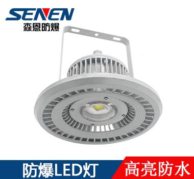 led防爆工厂灯100W