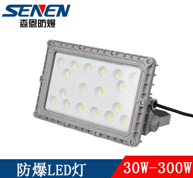 LED大功率防爆投光灯(泛光灯)30W-300W